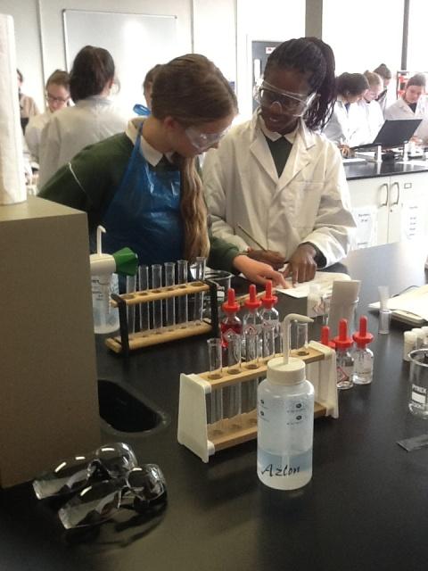 Festival of Chemistry