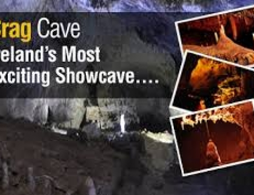 4th Class School Tour – Crag Cave